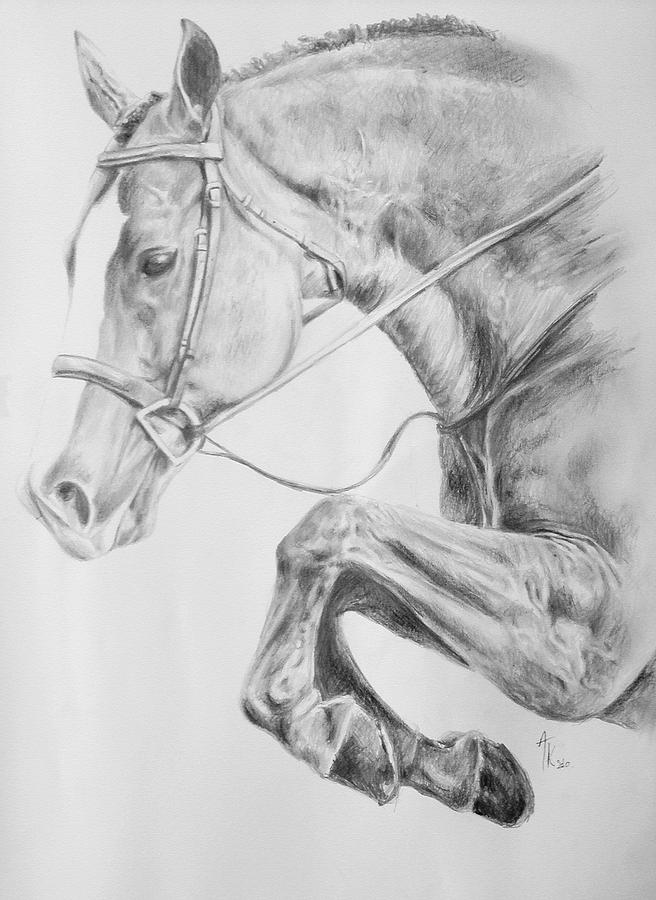 horse-pencil-drawing-arion-khedhiry