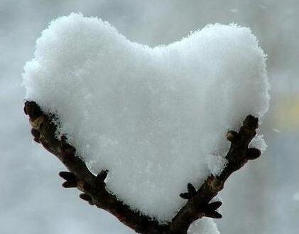 """""""… come è fredda la realtà quando hai un chiodo dentro al cuore …"""""""